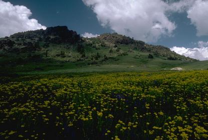 Góry Sierra Nevada  42