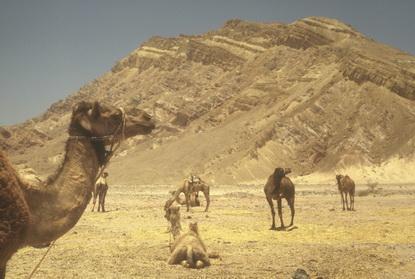 Bliski Wschód 72