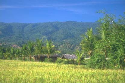 Bali, Indonezja 82
