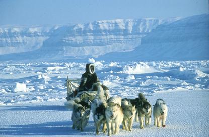 Arktyka 82