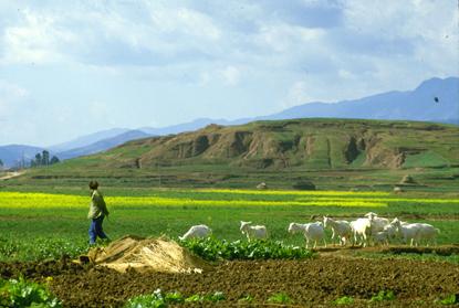 Chiny i Tybet 38